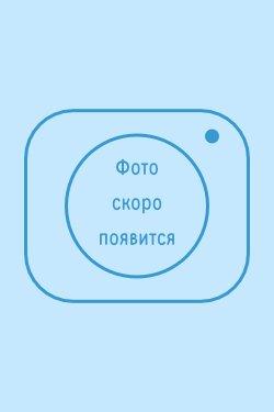 Медвеженко Светлана Олеговна