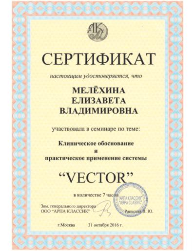 Melehina-sertificate2